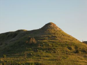 I love the shape of this mound